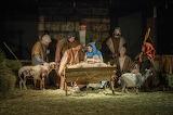 Living-nativity-baby Jesus-Mary-Joseph-animals-people