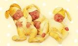 #Sleepy Baby Bunnies by Anne Geddes