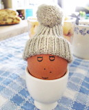 Keeping Your Egg Cozy