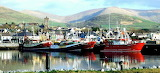 Dingle Harbour Co. Kerry, Ireland