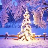 *Snow for Christmas...