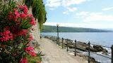 Sea, flowers, stones, coast, fence, lantern, Croatia, city