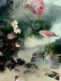fantasy-flowers