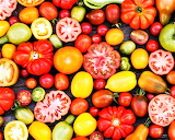 #Tomato Variety Close-Ups