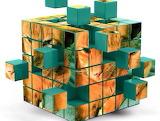 Rubik cat