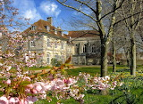 Spring at Bishop's House, Winchester