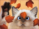 Cat & Leaves