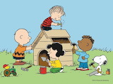 Building Snoopy's House
