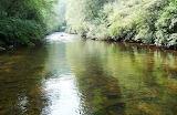 Turkey Pen Flats Creek