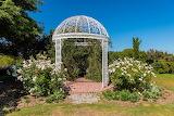 Rose Garden in California