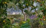 Aberglasney Gardens Nigel McCall