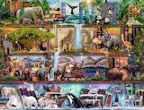 Zvířecí svět
