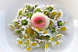 Pretty Daisy Arrangement
