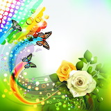 The love of Butterflies
