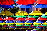 Parasols, Mauritius