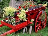 Carreta con flores