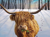 Winter Highland Cow