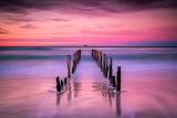 St Claire's Beach, Dunedin by Marta Kulesza