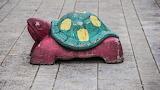 Colored turtle in Finland