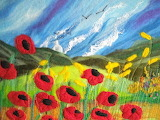 poppies, Sue Forey