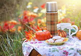 Pumpkins, cookies, coffee cup, thermos, basket, grass, autumn
