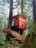 Cabins - Issaquah Washington
