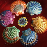 Painted scallop shells