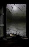 Dark View