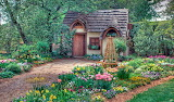 Magical Cottage Scenery
