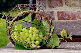 healthy food-grape