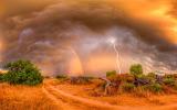 Lightning and Rainbow over Field
