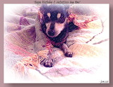 Happy Birthday & Valentine's Day Mom-PicSketch-2.13.16