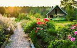 House-summer-flowers-path-sun