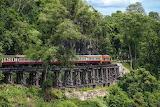ASIA-TRAIN
