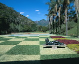 Tropical garden - Brazil