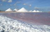 Sea Salt In The Making