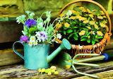 Flowers, Figure, Basket, Art, Art, Flowers, Still Life