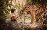 Nature, tiger, tree, animal, predator, boy, trunk, log, Mowgli,