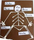 Skeleton-sl