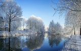 Winter Solstice - Winter Reflections