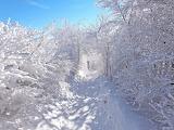 lovely winter!