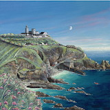 Lizard Point by Gilly Johns