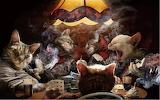 Card Night Cats