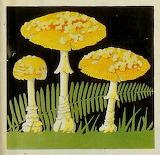 "Plants tumblr dogstardreaming Mushrooms ""Field Book of Common Mu"