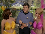 Star Trek: Shore Leave