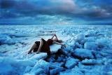 Beautiful-scenic-self-portraits-of-adventurous-photographers-265