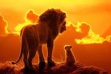 Lion-king (1)
