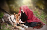 Girl, nature, wolf, red scarf, strawberries, basket
