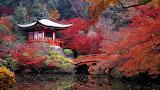 Japanese Tea Garden San Franciso California USA