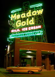 Vintage Neon Meadow Gold in Chandler